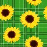无缝的样式用在绿色格子呢背景的向日葵。 向量例证