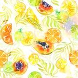 无缝的样式用抽象热带水果 免版税库存照片