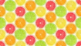 无缝的样式用柑橘水果 免版税图库摄影