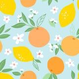 无缝的样式用柠檬和桔子,热带果子,叶子,花 结果实重复了背景 盖子的植物模板,很好 皇族释放例证