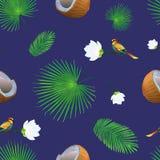 无缝的样式用椰子,热带叶子,花 皇族释放例证