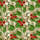 无缝的样式用樱桃莓果和开花 免版税库存照片