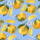 无缝的样式用橙色果子和切片 开花的花 库存例证