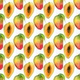 无缝的样式用热带异乎寻常的果子 在白色背景的芒果切片 免版税库存图片