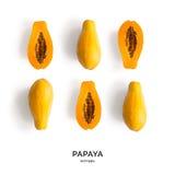 无缝的样式用番木瓜 热带抽象的背景 在白色背景的番木瓜 免版税库存图片