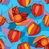 无缝的样式用空泡或灯笼果在红色和在蓝色马赛克背景的桔子 皇族释放例证
