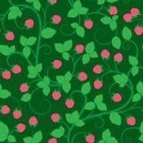 无缝的样式用莓 免版税库存图片