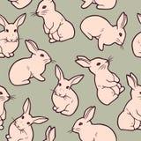 无缝的样式用逗人喜爱的白色兔子 库存图片