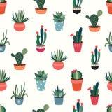 无缝的样式用仙人掌和多汁植物 库存图片