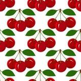 无缝的样式用水多的成熟樱桃果子 库存图片