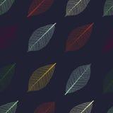 无缝的样式的例证与叶子的骨骼的 免版税库存照片