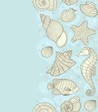 与海洋壳的无缝的样式 免版税图库摄影