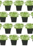 无缝的样式绿色植物罐例证 免版税库存图片
