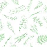 无缝的样式花和叶子 免版税库存图片