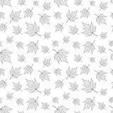 无缝的样式,与槭树叶子的背景 库存图片