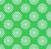 无缝的样式,与花主题的墙纸 简单的monochrom 免版税图库摄影