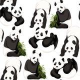 无缝的样式,背景 熊猫和竹子 向量例证