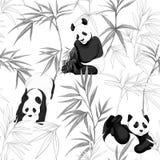 无缝的样式,背景 熊猫和竹子 库存例证