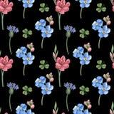 无缝的样式,蓝色,在黑色的桃红色野花 图库摄影