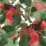 无缝的样式组成由红色水彩 免版税库存图片