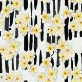 无缝的样式-手拉的在垂直条纹背景的水彩热带花 皇族释放例证