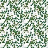 无缝的样式绿色叶子 皇族释放例证