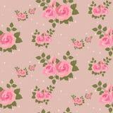 无缝的桃红色玫瑰样式 图库摄影
