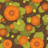 无缝的模式。 与叶子的南瓜 免版税库存照片