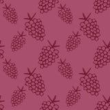 无缝的模式用葡萄 免版税库存照片
