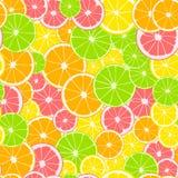无缝的模式 切片印刷品绿色石灰、黄色柠檬、粉红色葡萄柚和桔子 柑桔背景 皇族释放例证