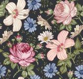 无缝的模式 现实被隔绝的花 背景几何老装饰品纸张葡萄酒 春黄菊罗斯木槿冬葵 墙纸 图画板刻 库存例证