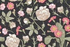 无缝的模式 现实被隔绝的花 背景几何老装饰品纸张葡萄酒 罗斯报春花樱草属墙纸 图画板刻 皇族释放例证