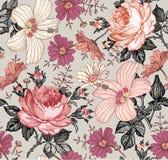 无缝的模式 现实被隔绝的花 背景几何老装饰品纸张葡萄酒 春黄菊罗斯木槿冬葵 墙纸 图画板刻