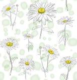 无缝的水彩花的布置 库存例证
