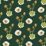 无缝的水彩花纹花样 在白色背景的手画花 不同颜色手画花  ? 向量例证