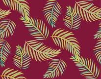 无缝的热带密林棕榈叶传染媒介样式背景 库存图片