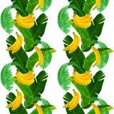 无缝的热带样式用香蕉和babana在白色背景离开 免版税库存图片