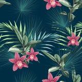 无缝的热带花纹花样背景 兰花开花,密林叶子,在轻的背景 皇族释放例证
