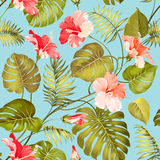 无缝的热带花 库存例证