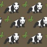 无缝的熊猫和竹子墙纸 皇族释放例证