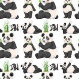 无缝的熊猫和竹子 皇族释放例证