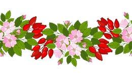 无缝的玫瑰果装饰品 莓果和花狗玫瑰的样式 库存图片