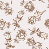 无缝的玫瑰色模式 免版税库存图片