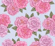 无缝的玫瑰 免版税库存照片