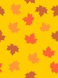 无缝的秋天背景 免版税库存图片