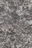 无缝的粗砺的纹理墙壁膏药 库存图片