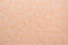 无缝的精美墙纸样式纸织地不很细背景 免版税库存照片