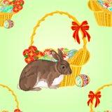 无缝的纹理兔子和柳条传染媒介 库存图片