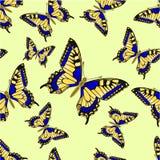 无缝的纹理蝴蝶Inachis io传染媒介 图库摄影