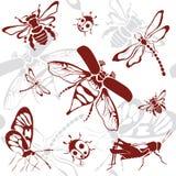 无缝的背景昆虫 免版税图库摄影